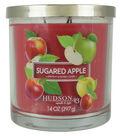 Hudson 43 Candle & Light 14 oz. Sugared Apple Premium Scented Jar Candle
