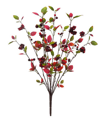 Blooming Autumn Berry Bush-Red