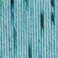 Caron Simply Soft Speckle Yarn