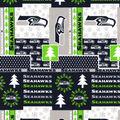Nfl Seattle Seahawks Winter Ctn
