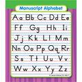 Carson Dellosa Alphabet Study Buddies 12 Packs
