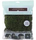 Sheet Moss Preserved