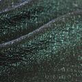 Jaquard Fabric-Metallic Textured June Bug