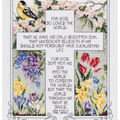 Janlynn Counted Cross Stitch Kit John 3:16-17