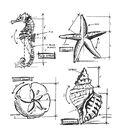 Tim Holtz Cling Stamps 7\u0022X8.5\u0022-Nautical Blueprint