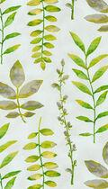 Waverly Print Fabric 54\u0022-Leaf Of Faith/Honeydew