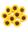 Favorite Findings Buttons-Sunny Flowers 8/pkg