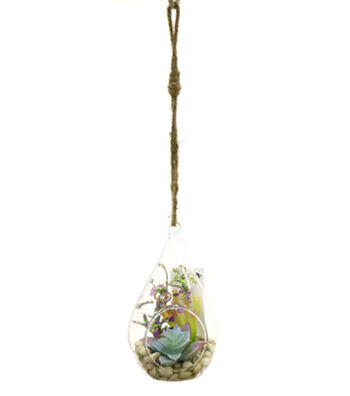 Bloom Room Succulent In Glass Teardrop-Blue & Green
