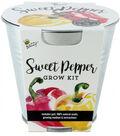 Buzzy Sweet Pepper DIY Grow Kit with Galvanized Metal Pail