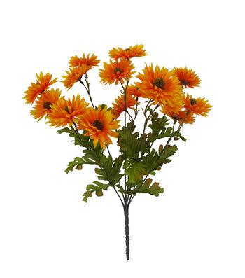 Blooming Autumn Daisy Bush-Orange