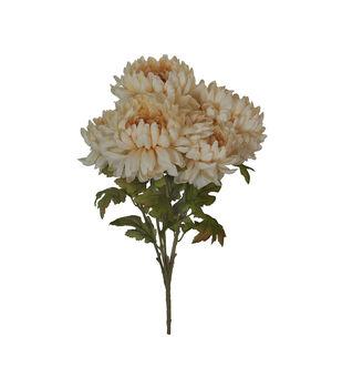 Blooming Autumn Mum Bush-Cream
