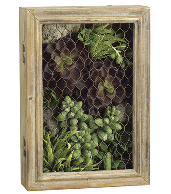 Bloom Room Luxe 12'' Echeveria, Aloe & Sedum In Wood Mesh Box-Green