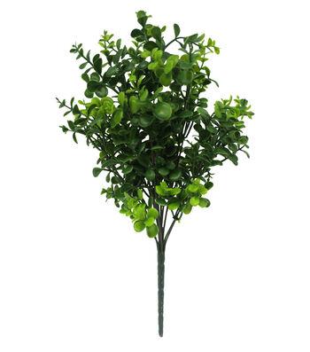 Fresh Picked Spring 16'' Boxwood Bush