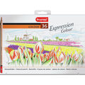 Bruynzeel 36 pk Expression Colour Pencils with Tin