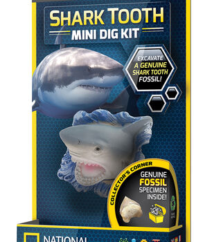National Geographic Shark Tooth Mini Dig Kit
