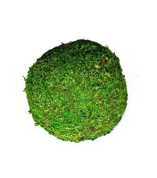 Moss Balls-6in
