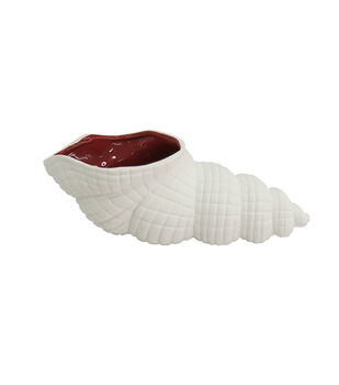 Seaside White Seashell Container with Red Inside