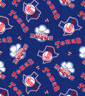 Cooperstown Texas Rangers Cotton Fabric