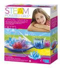 STEAM Crystal Garden Kit