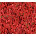 Christmas Cotton Fabric-Red Poinsettias