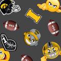 University of Iowa Hawkeyes Fleece Fabric -Emoji