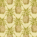 Waverly Sun N Shade Fabric 9\u0022x9\u0022 Swatch-Pineapple Grove Natural