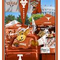 Texas Longhorns Cotton Panel-Tailgate