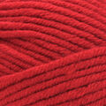 Lion Brand Color Made Easy Yarn