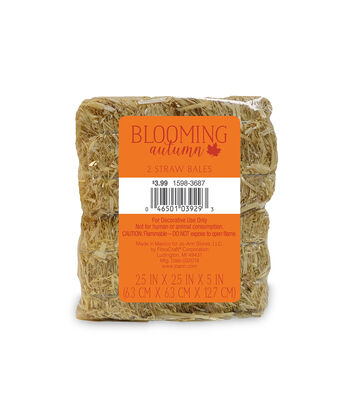 Blooming Autumn 2 pk Straw Bales