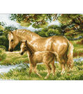 Horse With Foal Counted Cross Stitch Kit 14 Count