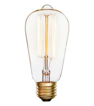 Hudson 43 Edison Pendant Shaped Bulb with 13-stem Filaments