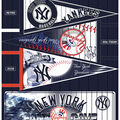 New York Yankees Felt Fabric Panel 36\u0027\u0027-Pennant