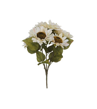 Blooming Autumn Sunflower Bush-Cream