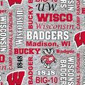 Wisconsin Badgers Fleece Fabric-Heather Verbiage