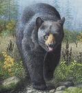 Novelty Cotton Fabric 44\u0022-Black Bear Family
