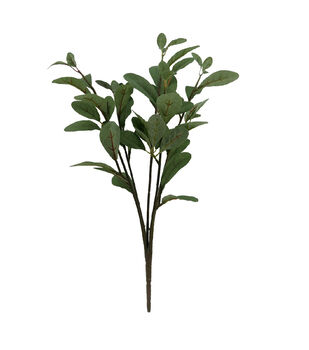 Blooming Autumn 22'' Bay Leaf Bush-Green