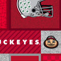 Ohio State Buckeyes Fleece Fabric-College Patches