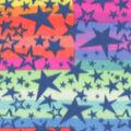 Blizzard Fleece Fabric-Stars in Line
