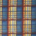 Anti-Pill Plush Fleece Fabric-Fall Distressed Plaid
