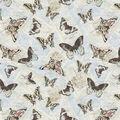Premium Cotton Fabric-All Over Butterflies