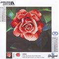 Leisure Arts Diamond Art Beginner Kit 8\u0027\u0027X8\u0027\u0027-Red Rose