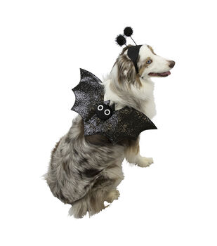 Maker's Halloween Pet Accessory-Set Bat Small/Medium