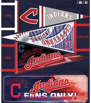 Cleveland Indians Felt Panel 36''-Pennant, , hi-res