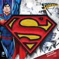 DC Comics Superman Iron-On Applique-Logo