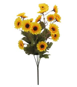 Blooming Autumn Daisy Bush-Dark Yellow
