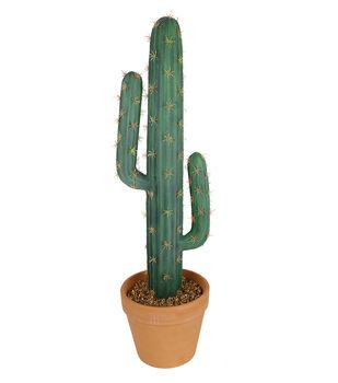Fresh Picked Spring Desert Aura 28'' Cactus Arrangement