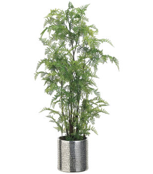 Leather Fern in Aluminum Planter 48''-Green