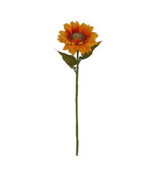 Blooming Autumn Orange Sunflower Stem with Golden Center