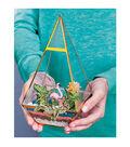 Creativity for Kids Tropical Terrarium