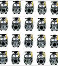 Jolee\u0027s Boutique Dimensional Mini Repeats Stickers-Graduation Owl